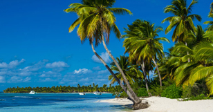 Caribbean & Mexico